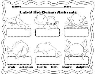 ocean animals labeling worksheet may ocean animals pinterest ocean worksheets and animals. Black Bedroom Furniture Sets. Home Design Ideas
