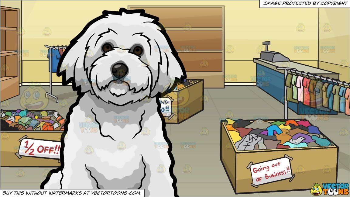 A Bichon Frise Pet Dog And Store Going Out Of Business Background