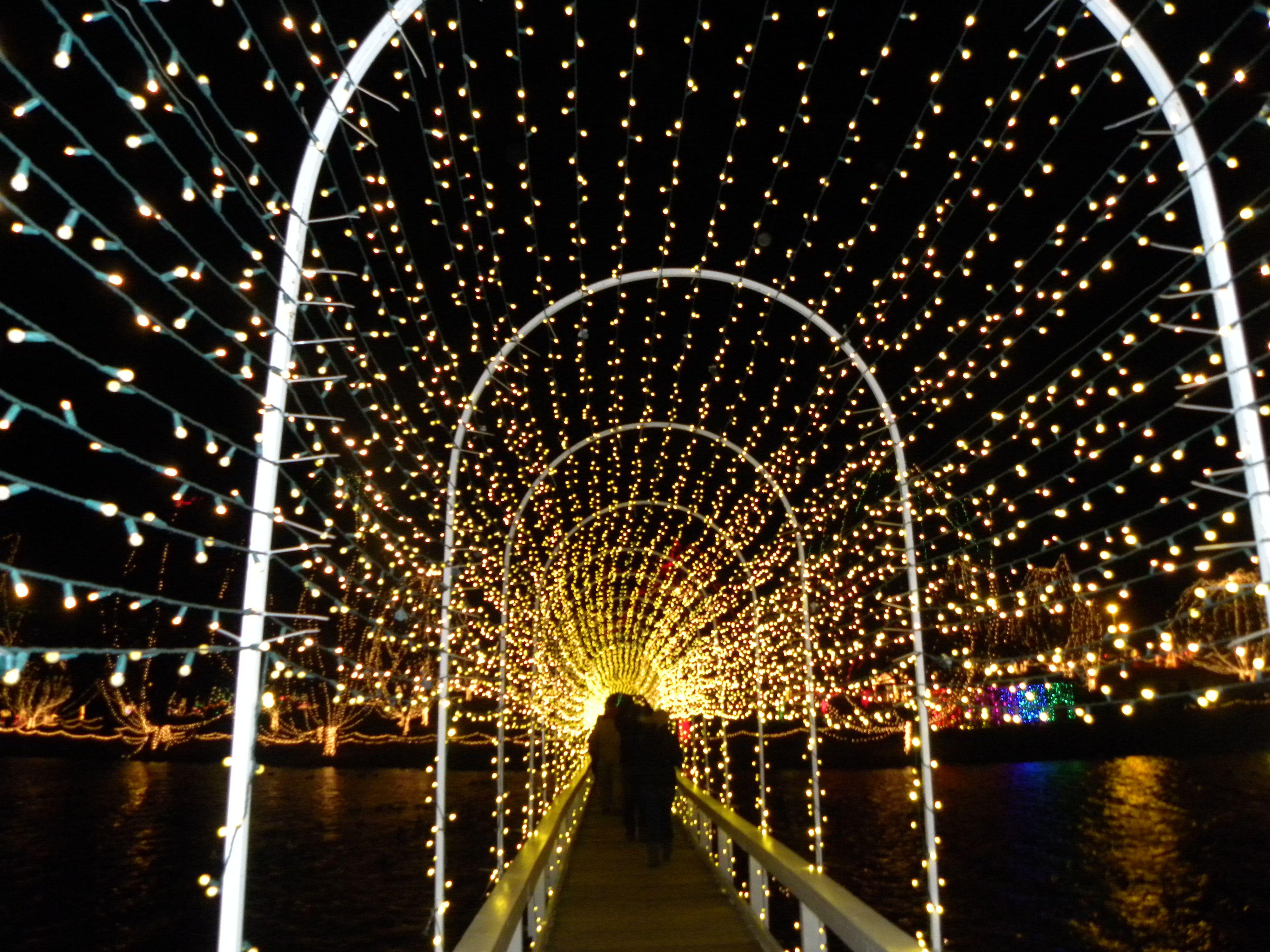 Christmas Festival of Light diwali Pinterest