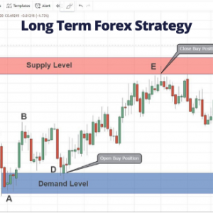 Complete guide tp forex