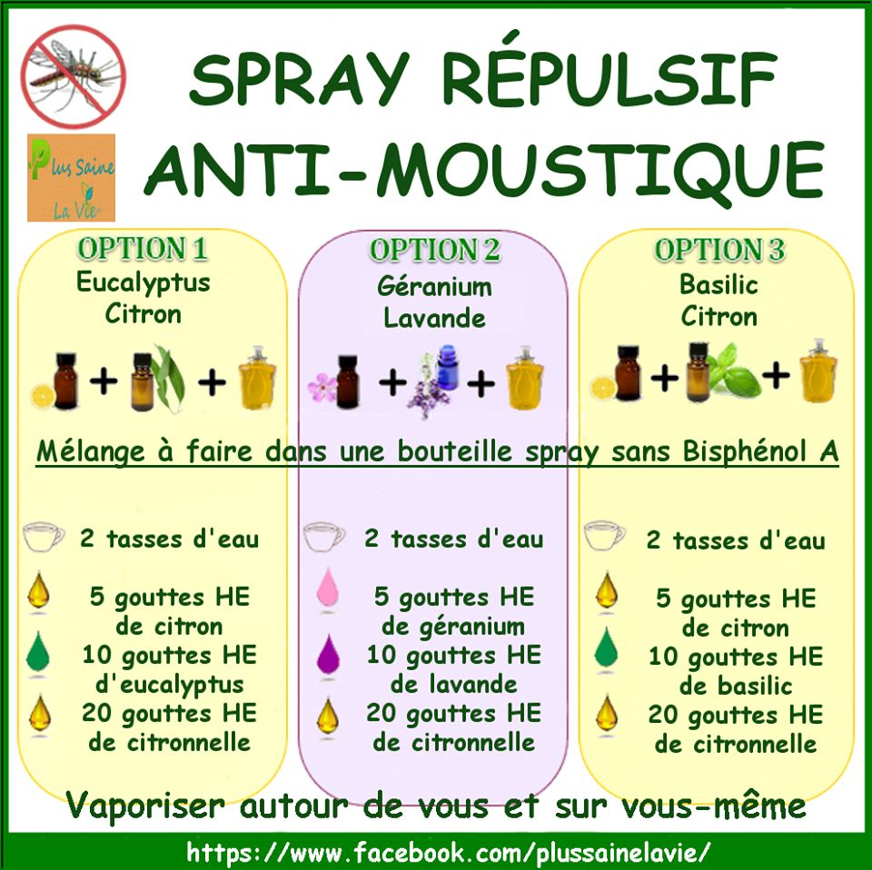 les 25 meilleures id es de la cat gorie insecticide bio sur pinterest insecticide remede. Black Bedroom Furniture Sets. Home Design Ideas