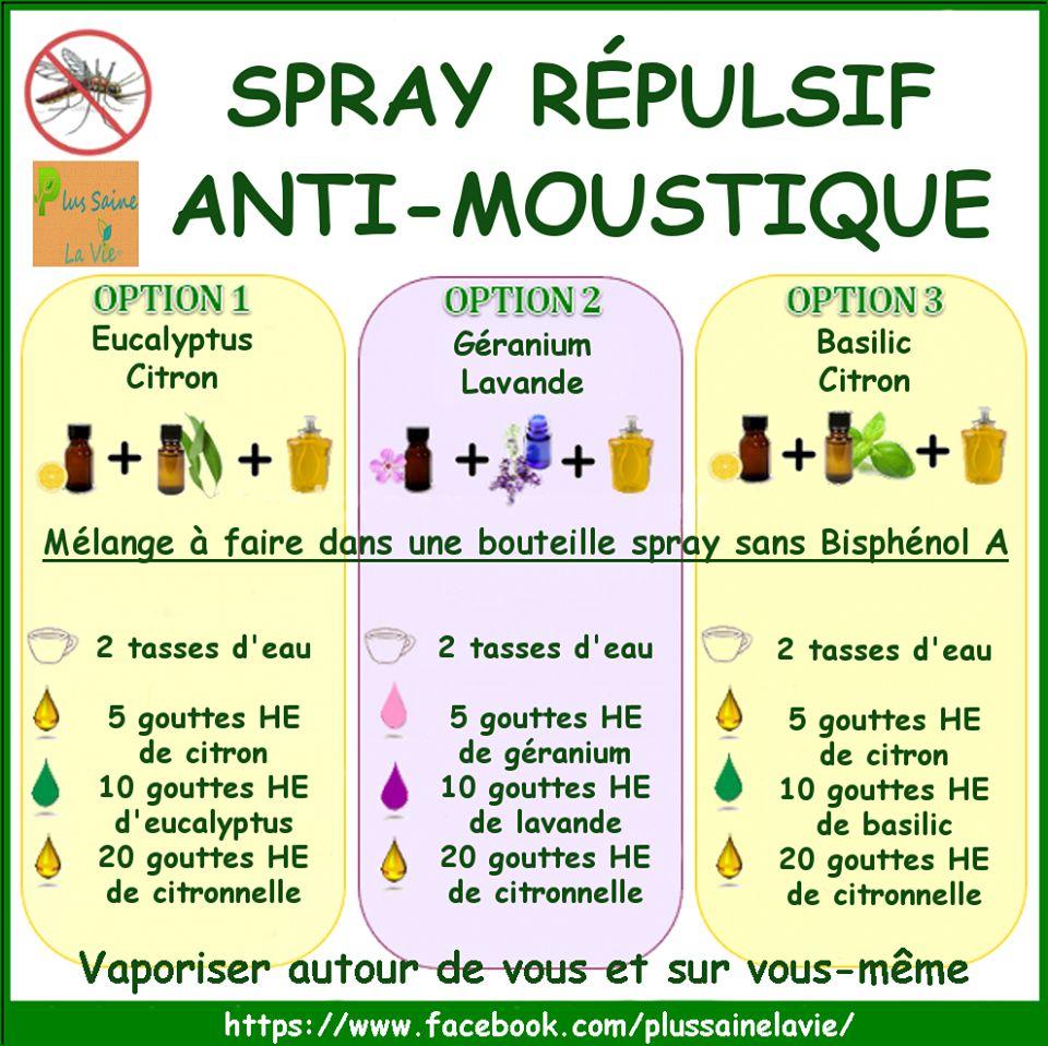 spray r pulsif naturel anti moustique recettes chasse moustique produit menager maison et. Black Bedroom Furniture Sets. Home Design Ideas