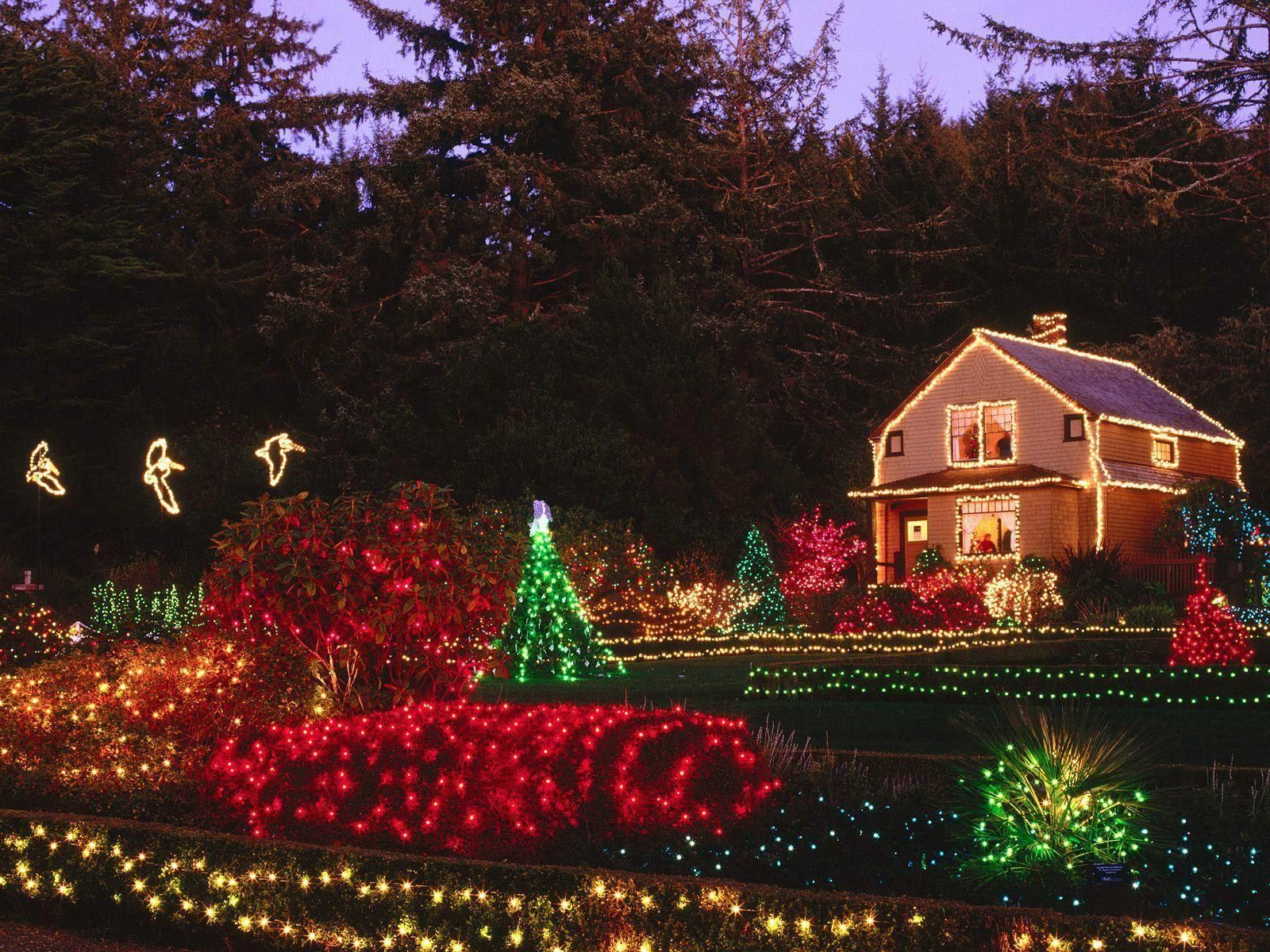 Pin by Festive Christmas Ligt Display on Christmas Light Fight