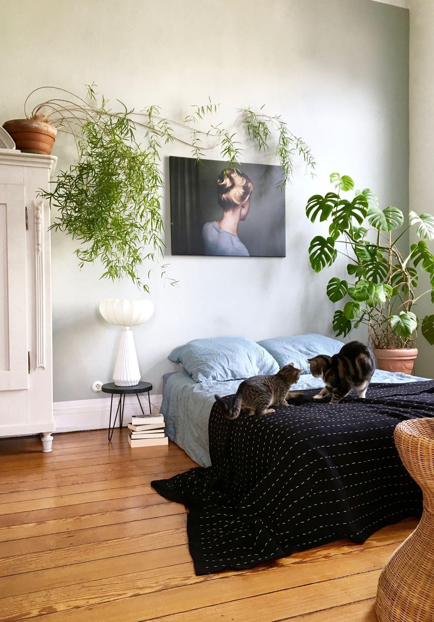 Schlafzimmer Ideen zum Einrichten & Gestalten (mit