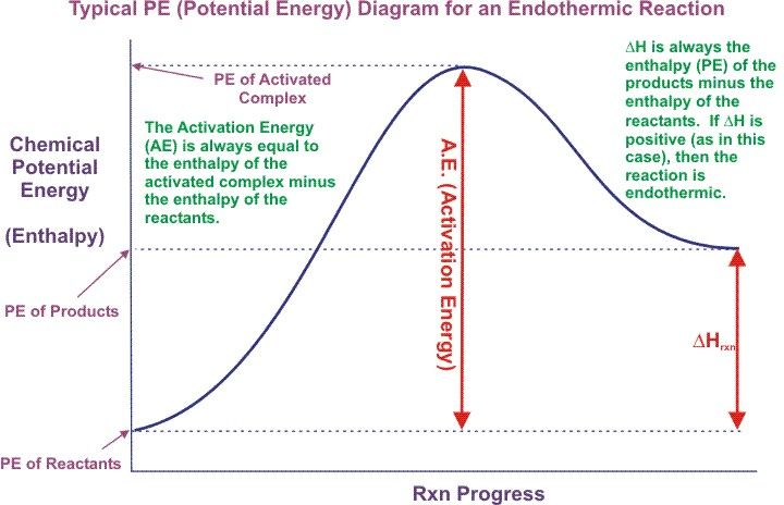 Endothermic energy diagram. | MCAT | Pinterest | Diagram ...
