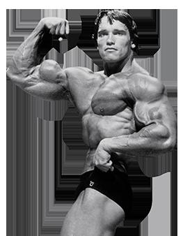 Arnold schwarzeneggers blueprint to mass malvernweather Images
