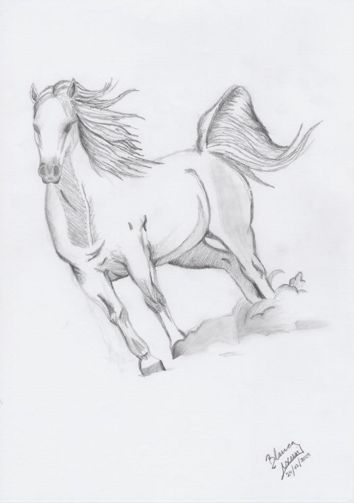 dibujos de caballos  Buscar con Google  Arte  Pinterest
