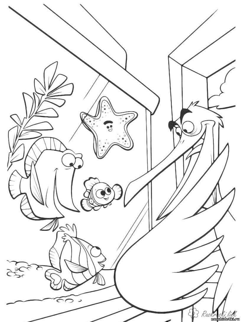 V Poiskah Nemo Ryby Nemo Ptica Nemo Coloring Pages Disney