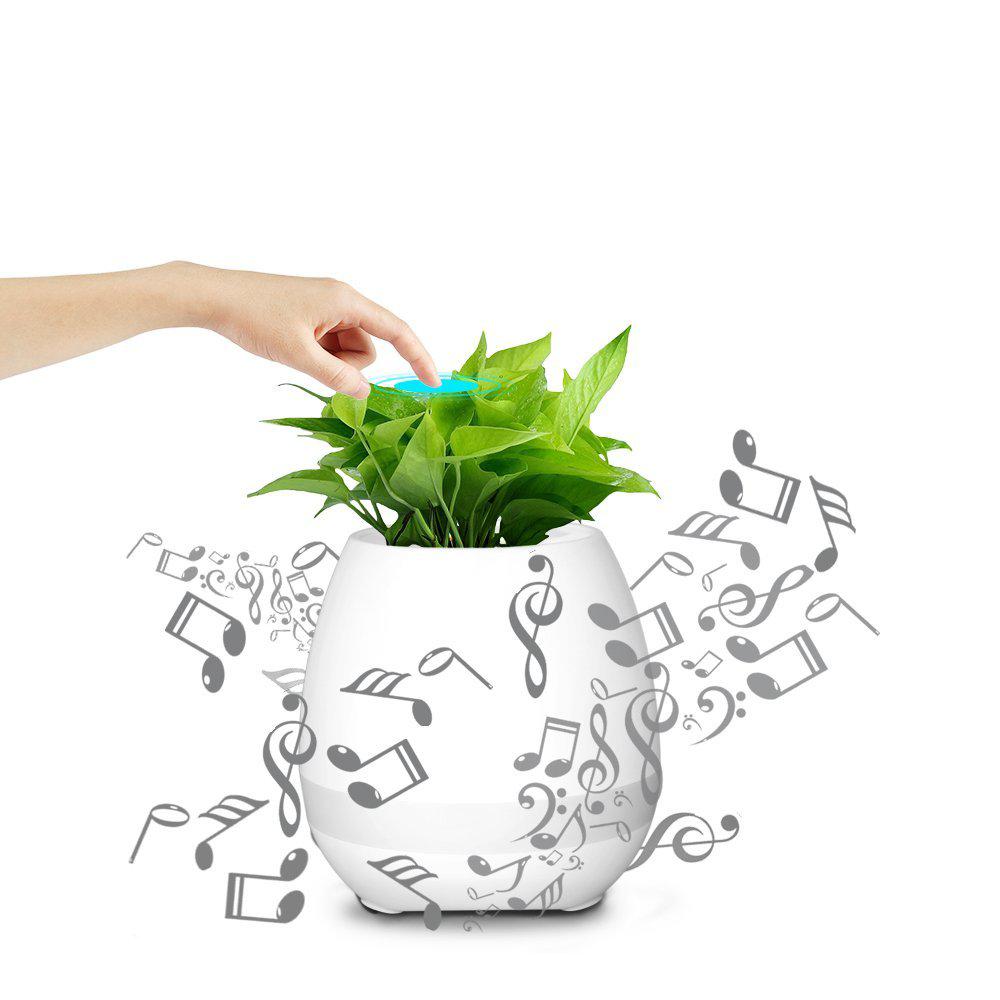 Dieser Klingende Blumentopf Mit Led Beleuchtung Kabellosem Lautsprecher Und Bluetooth Ist Ein Witziges Accessoire Und Ein Geschenk Blumentopf Blumen Gestalten