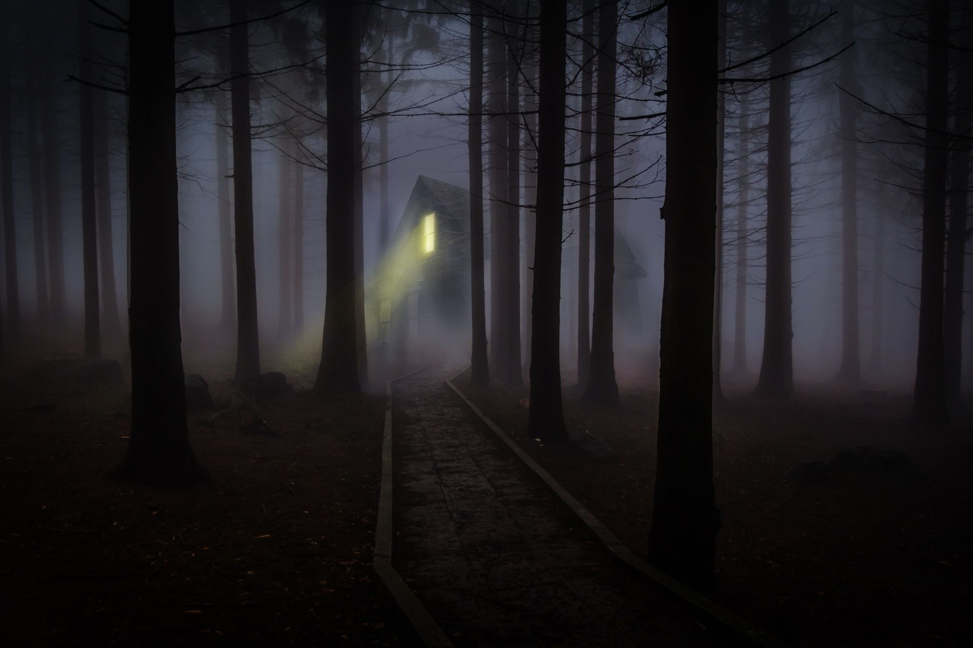 Explore Forest Sounds, Spooky Woods, And More