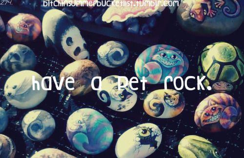 Have a pet rock ✔️