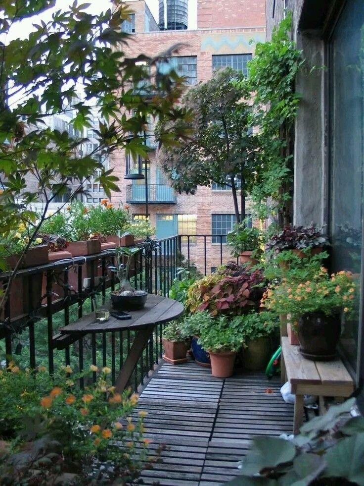 Planet Succulent Balcony Garden Apartment Gardening 640 x 480