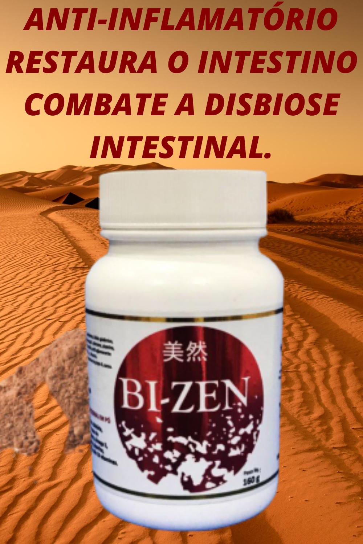 bi-zen probiótico