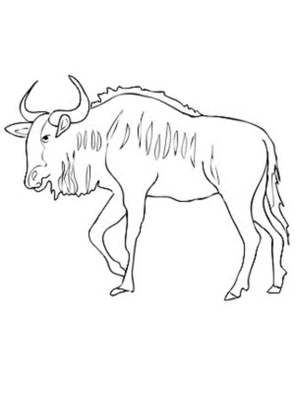 wildebeest coloring pages coloring kids Pinterest - new christmas coloring pages for grandparents