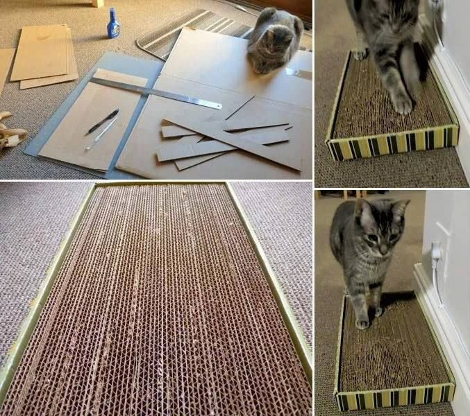 Homemade cardboard scratching post kitty pinterest for Homemade cat post
