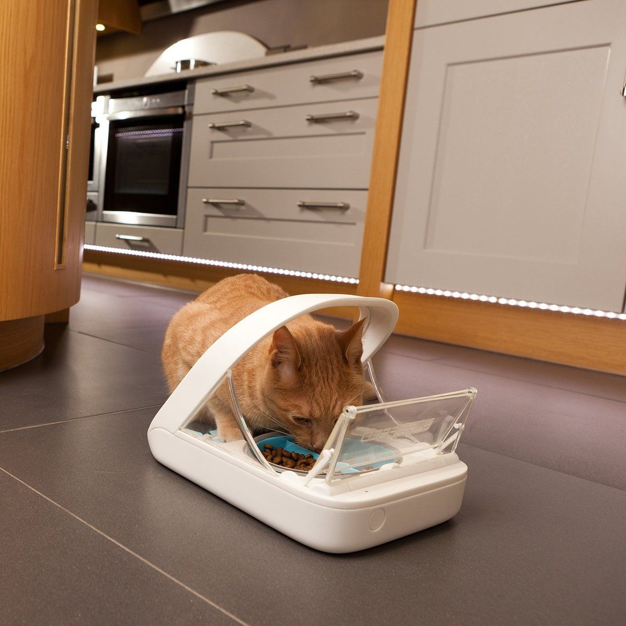SureFeed Microchip Pet Feeder Pet feeder, Cat feeder