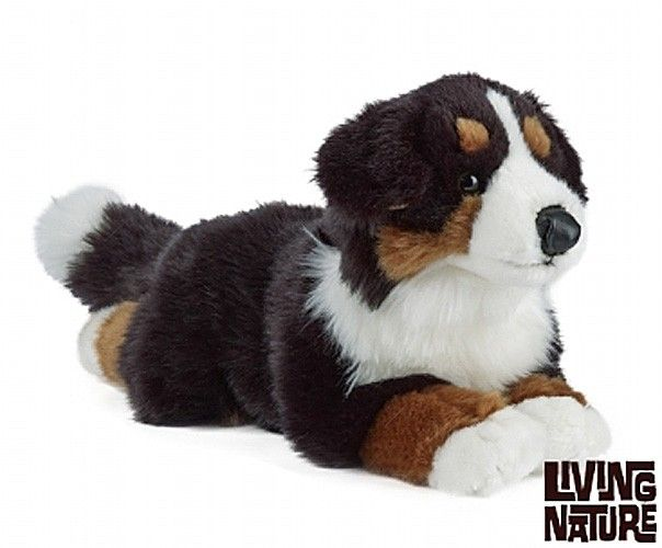 Toypost Bernese Mountain Dog By Living Nature 35cm Teddy Toys Bernese Mountain Dog Cuddly