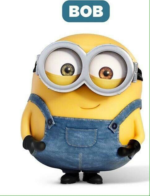 Bob Cutest Minion 3 Funny Minion Quotes Minions Funny Funny