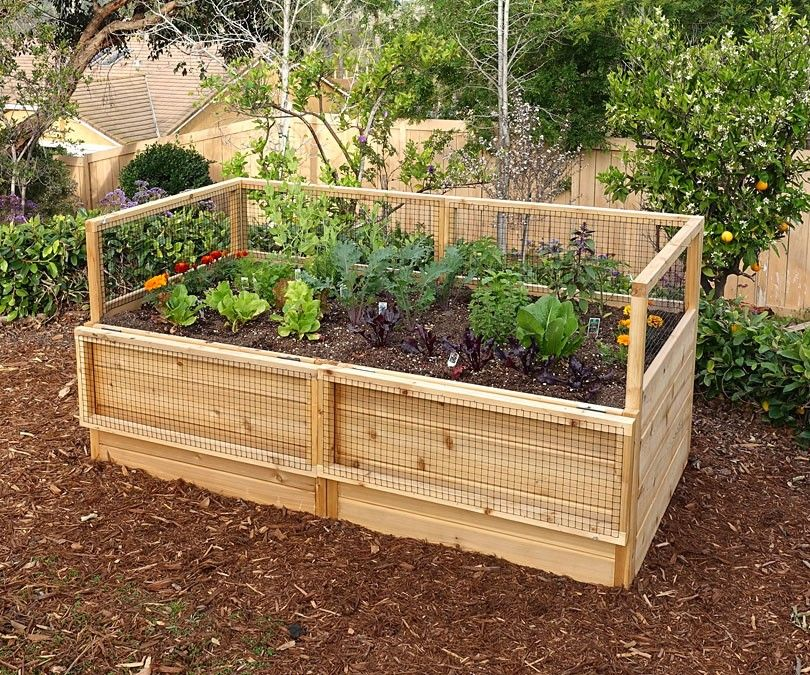 3' x 6' Raised Garden Bed With Hinged Fencing Small