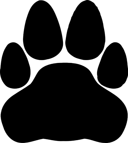 Cat 8 Png 445 500 Cat Silhouette Black Cat Silhouette Free Cats