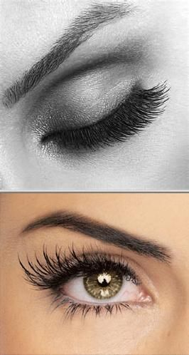 Get in touch with Nina Edwards and receive one of the best eyelash