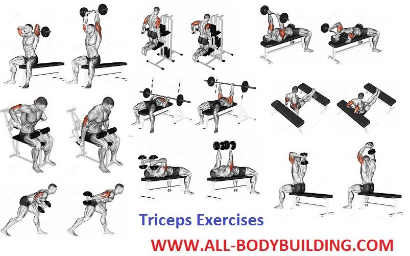 Image result for triceps exercises