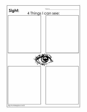 My Sight Sense Worksheets School Ideas Pinterest Worksheets