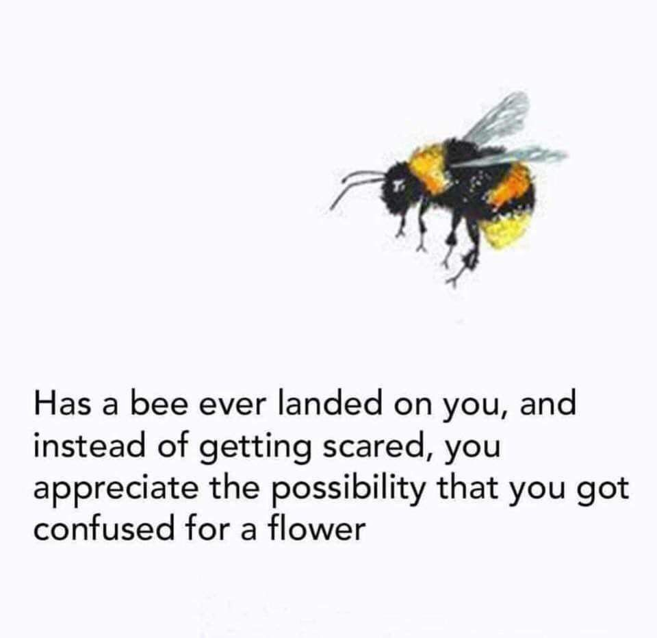 This Is So Beautiful Beautiful Quotes Bee Cute Quotes