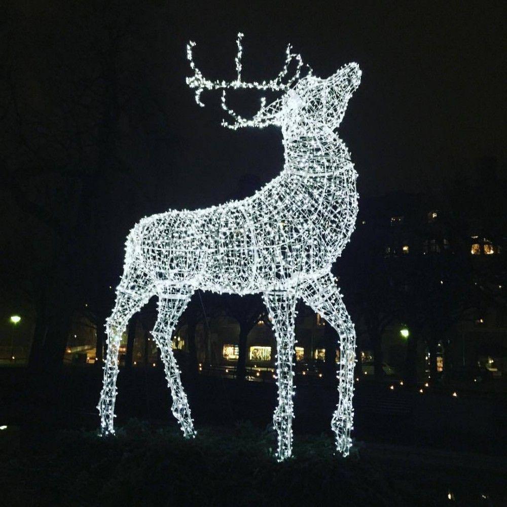 Life Size Large Outdoor Christmas Reindeer Motif Lights For Street Reindeer Outdoor Decorations Outdoor Christmas Reindeer Lights Christmas Garden Decorations