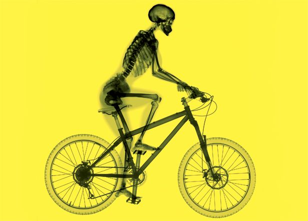 Frame Work Build Bone Strength With Images Cycling Benefits