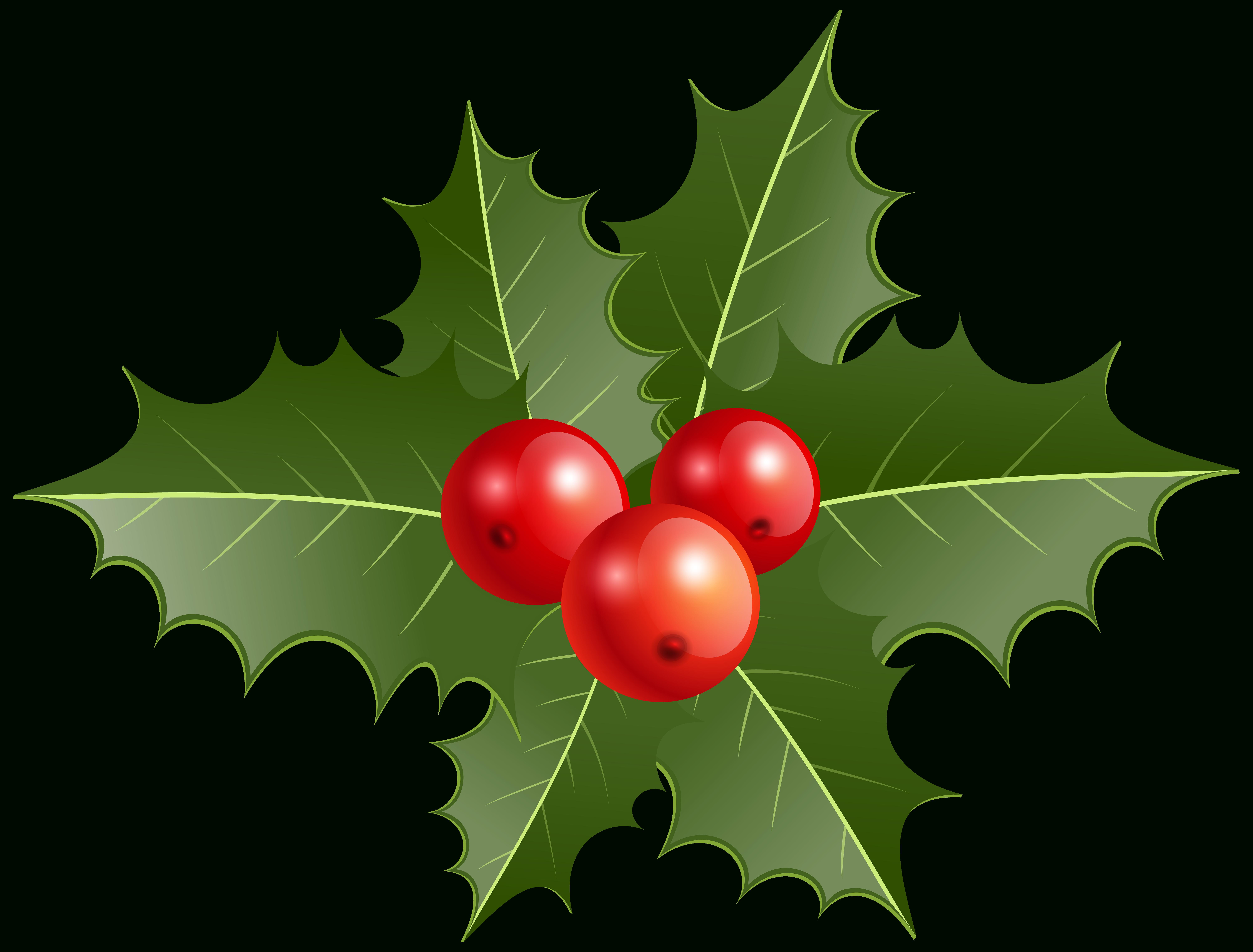 Christmas Holly Clipart Christmas Holly Clip Art Christmas