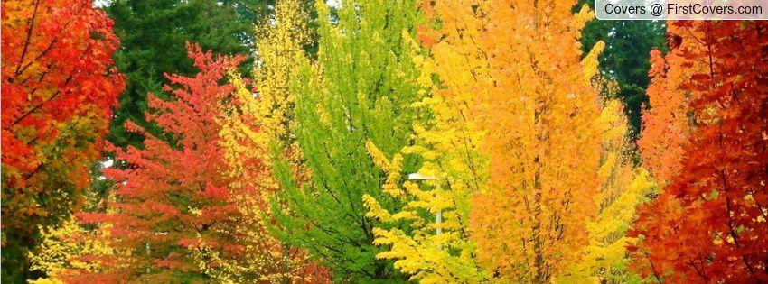 colors of fall ohio