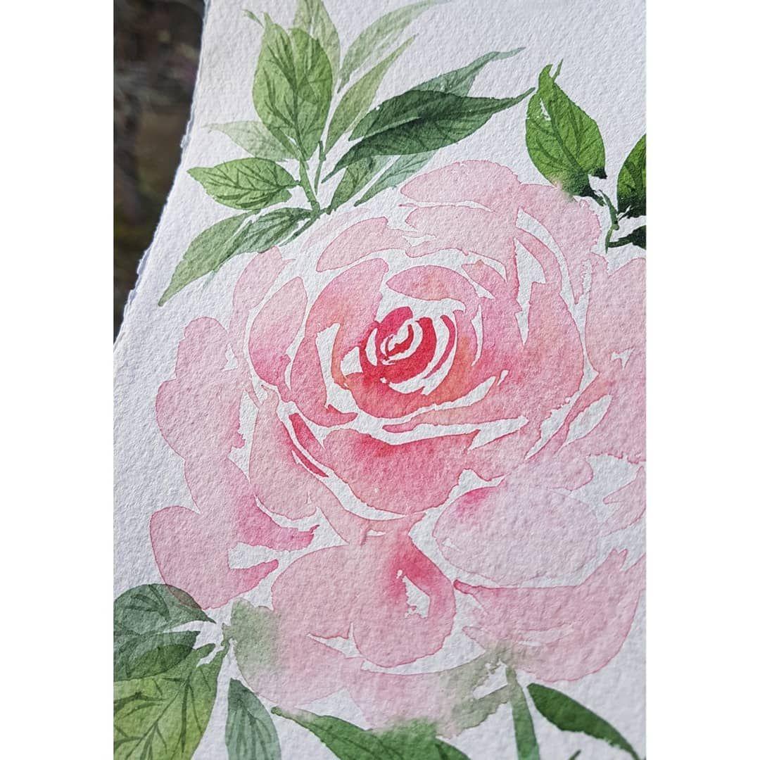 Rose A L Aquarelle Par Valentine Aquarelle Val Tine Peinture