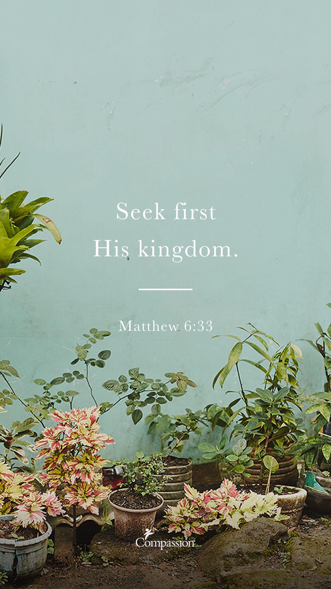 Matthew 6:33   Bible Verse Phone Wallpaper