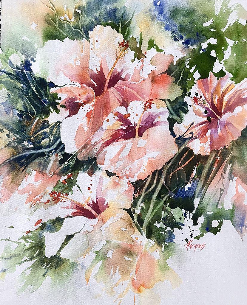 Rae Andrews Artworks Gallery Aquarelle Florale Aquarelle Fleurs