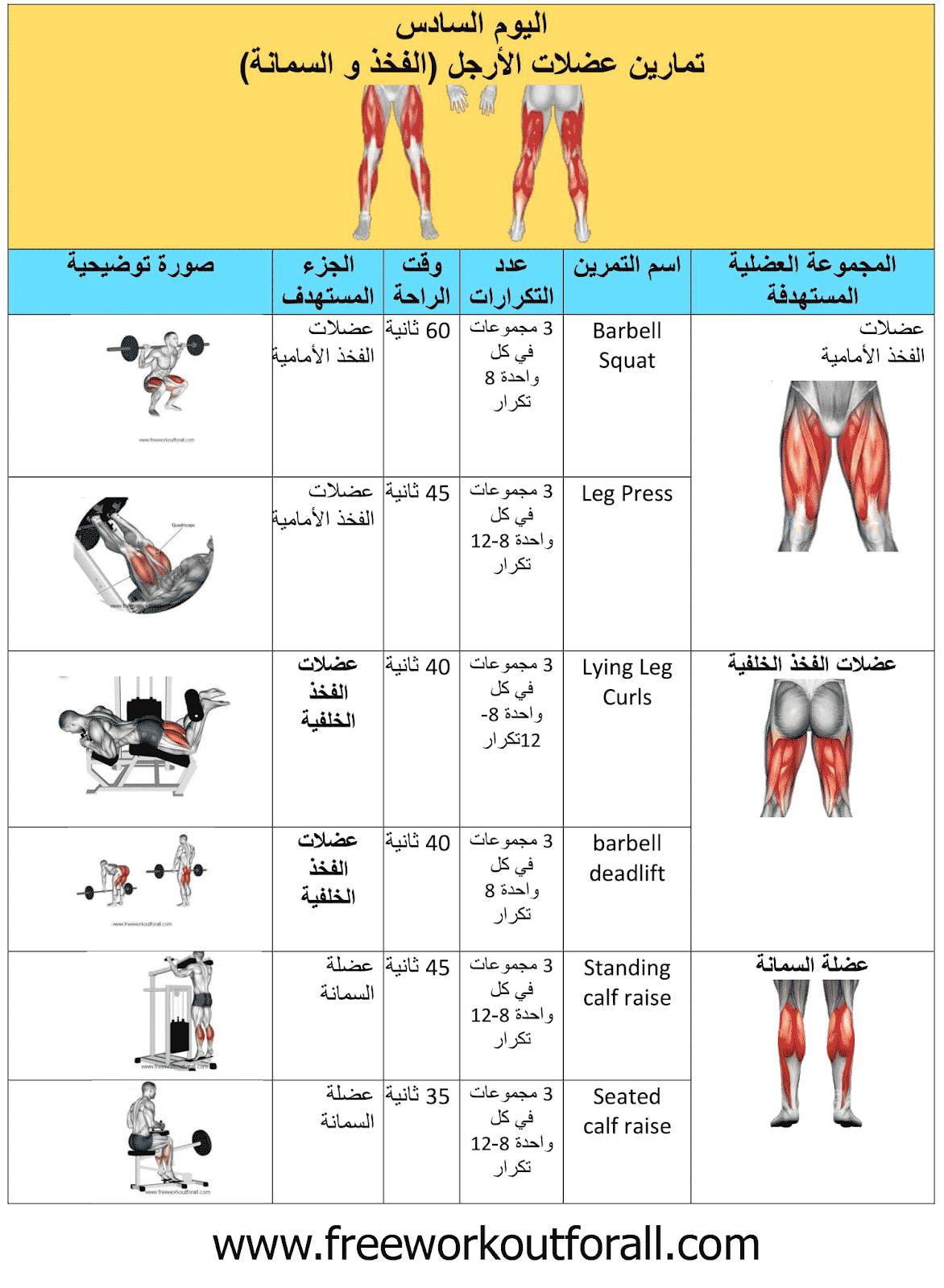 جدول تمارين كمال الاجسام 5 ايام و نظام Workout Routine For Men Workout Schedule Gym Schedule