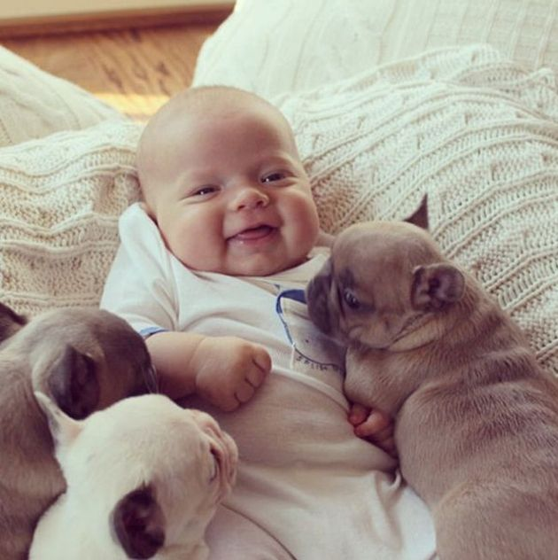cute babies with cute puppies great inspire animals pinterest