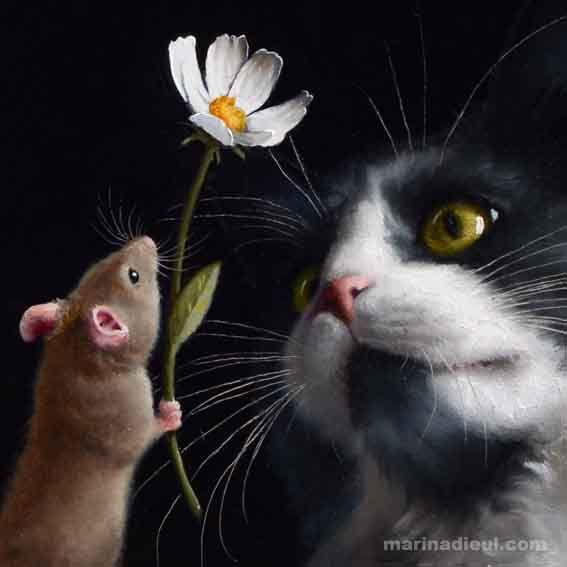 Cat and mouse love