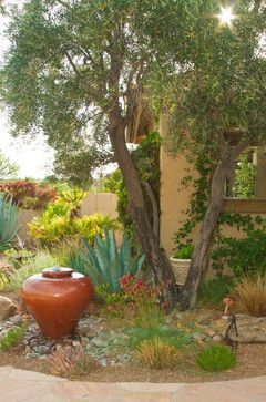 arizona courtyard desert landscape