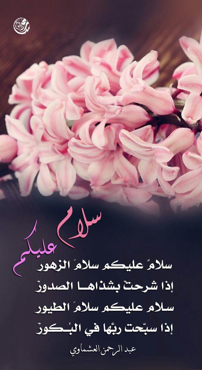 سلام عليكم شعر عبدالرحمن العشماوي Qoutes Coconut Arabic Typing