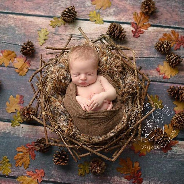 Adorable fall themed newborn photography will have everyone saying awwww newborn photography