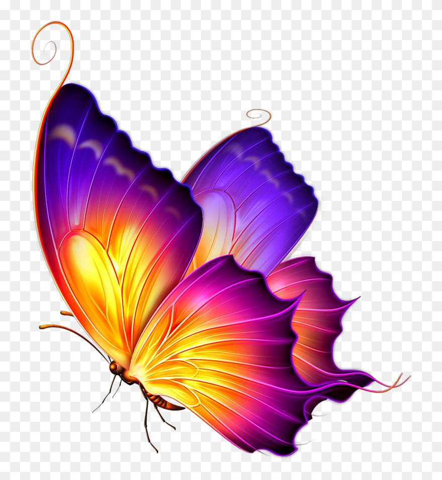 Pin On Butterfly Art Painting