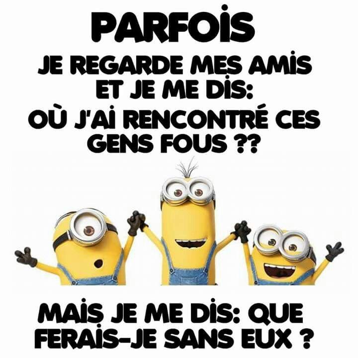 Minions humour pinterest citation dr le et citations dr les - Les minions bonne annee ...