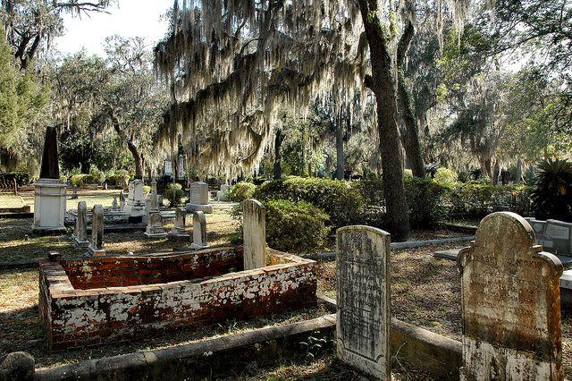St Marys Ga Camden County Historic Oak Grove Cemetery Moss Draped