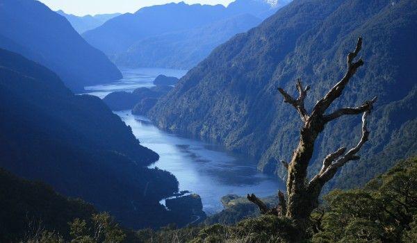 Fjordlands National Park, South Island, New Zealand