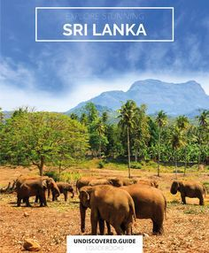 Sri Lanka is BEAUTIFUL.  Check out our indepth guide to the country at http://www.undiscovered.guide/sri-lanka?utm_content=buffer82815&utm_medium=social&utm_source=pinterest.com&utm_campaign=buffer