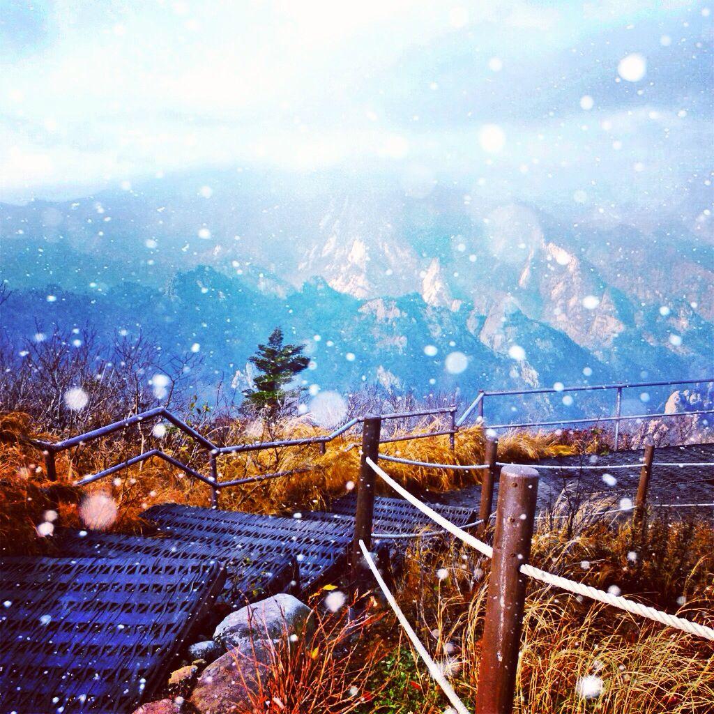 Korean winters are freezing Reisen
