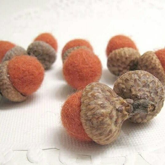Acorns are starting to drop - but they aren't as colorful as the ones in my shop!