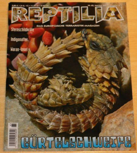 Reptilia No. 65 Juni/Juli 2007 +++ Gürtelschweife