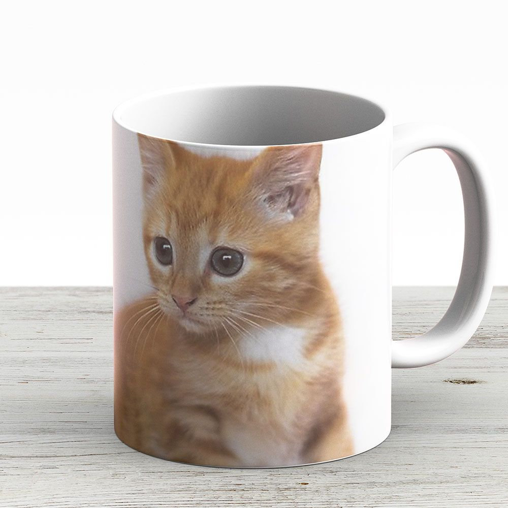 Ginger Kitten - Ceramic 11Oz Coffee Mug - Gift Idea For Family And Friends - Eyeskady